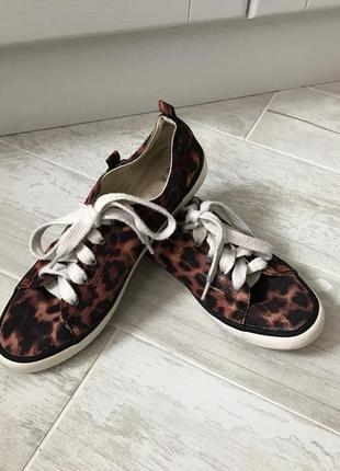 Леопардовые кеды h&m