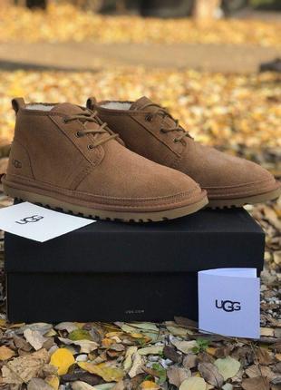 Ugg neumel boot мужские зимние замшевые угги на овчине 😍