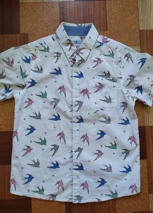 Next рубашка для мальчика