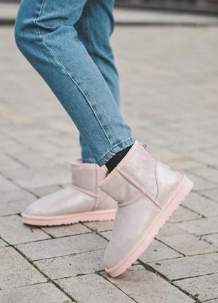 Шикарные ботинки ugg classic mini ii pink (сапоги зимние розовые)