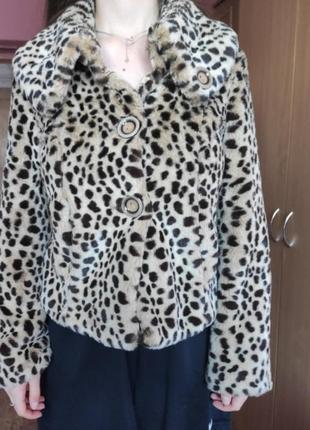 Леопардовая шуба от debenhams collection