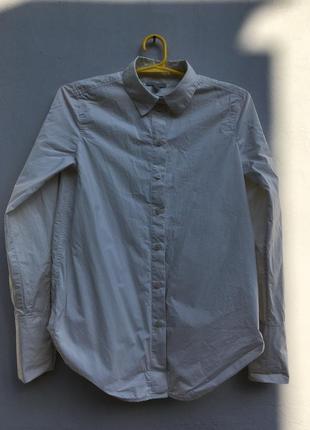 Нежно кремовая бежевая нюдовая классическая офисная удлинённая рубашка хлопковая cos