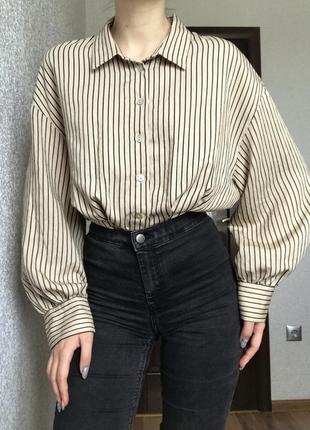 Рубашка блузка сорочка в полоску смужку бежевая бажева