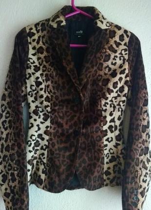 Стильный леопардовый пиджак, жакет, блейзер