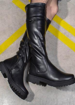 Высокие сапоги зимние на низком каблуке (326721)