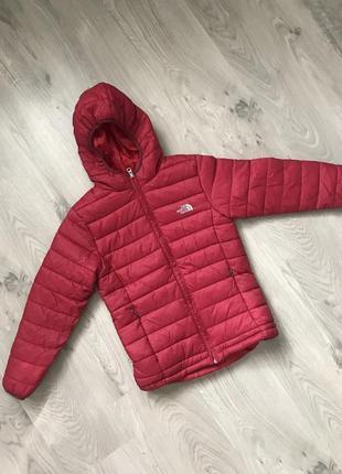 Легкая стёганная куртка унисекс the north face