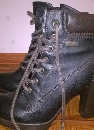 Ботильоны сапожки сапоги туфли chester честер