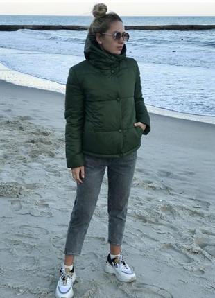 Курточка (куртка) осень (осенняя)