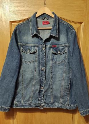 Zagora стрейчевая джинсовая куртка, пиджак, джинсовка