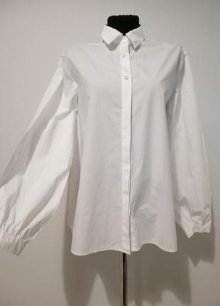 Стильное белоснежная рубашка с интересной спиной