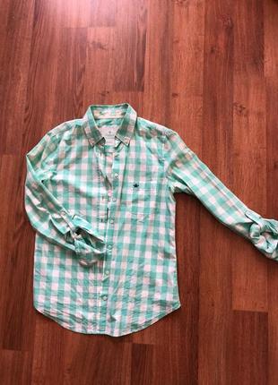 Рубашка в клеточку коллинз