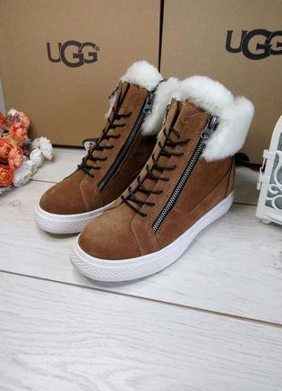 Угги женские ботинки коричневые со скрытой подошвой (каблуком) 1123-2