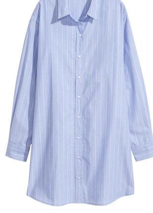 Трендовая бело-голубая хлопковая рубашка оверсайз h&m