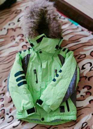 Куртка лыжная!skorpian