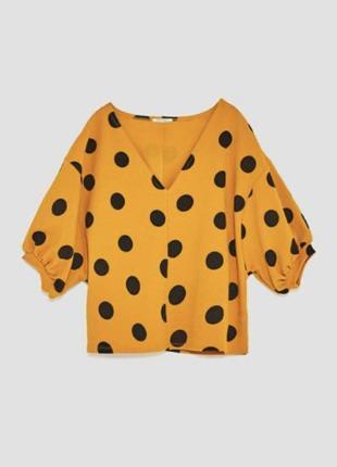 Блуза / кофта zara в горохи