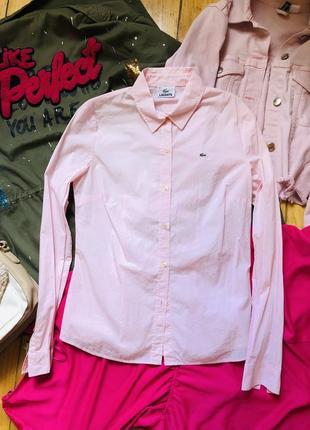 Брендовая рубашка сорочка lacoste
