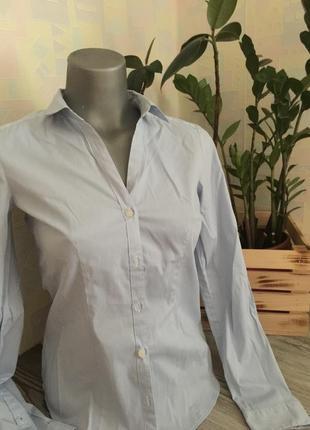 Светло голубая рубашка новая в полоску xs s h&m