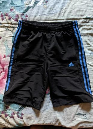Чёрные шорты adidas с синими лампасами (три полоски) | чорні шорти адік з синіми смужками