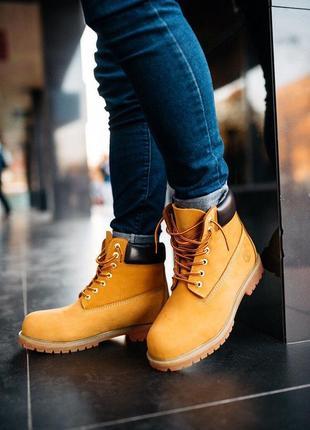 Черевики timberland ginger ботинки термо