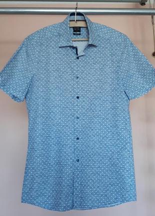 Стильная голубая тениска в белый горошек