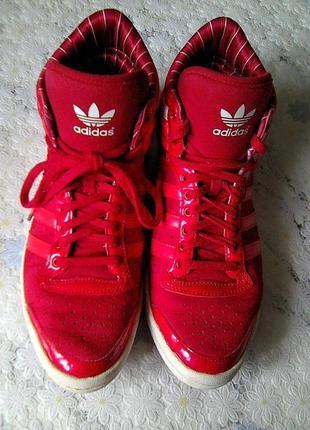 Классные комфортные кроссовки, хайтопы  adidas !  original !