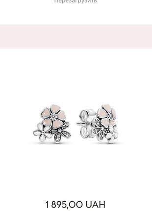 Pandora серебряные серьги оригинал