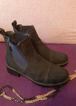 Темно - синие польские ботинки челси jenny fairy