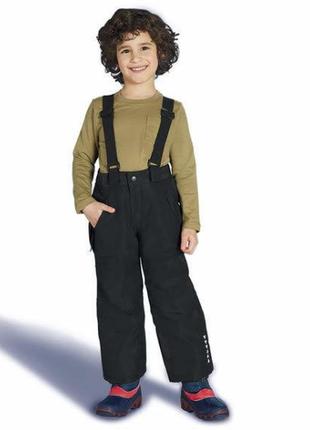 Функциональные зимние штаны с подтяжками crivit pro, lidl