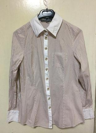 Рубашка блуза в полоску белая