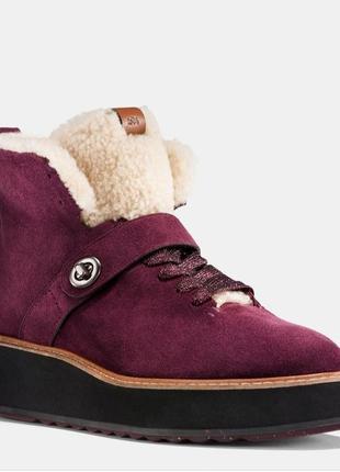 Coach фирменные ботинки натуральный замш+цигейка, оригинал из сша