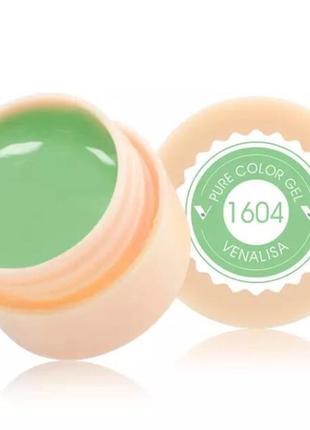 Цветной гель, гель-краска venalisa № 1604