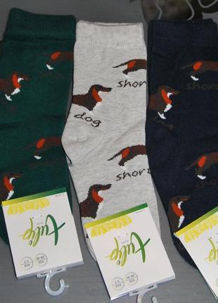 Демисезонные носки 1-3, 3-5, 5-7, 7-9, 9-11 лет bross собака такса бросс