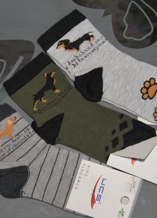 Демисезонные носки р. 7 ucs турция собака такса