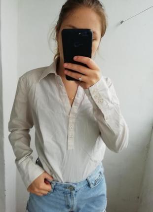 Одяг рубашка в полоску