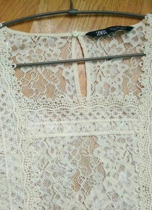 Кружево кружевная актуальная блуза ivory бренда zara,р. l