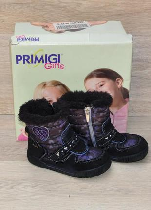 Теплые сапоги primigi gore tex 25 р 16,5 см. для девочки красивые сапожки демисезонные деми демісезоні чоботи черевики ботинки термо зимние