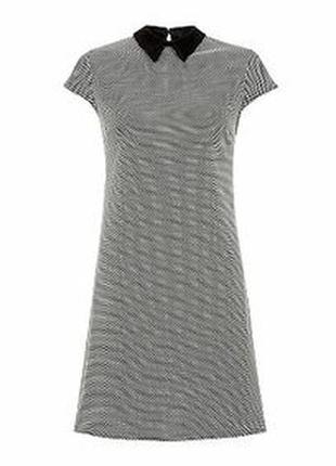 Платье shift шифт футляр с контрастным воротником от new look