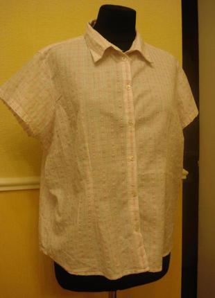 Летняя блузка-рубашка с коротким рукавом в клетку большого размера 22 (5xl)