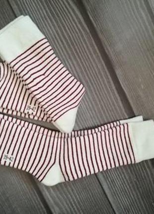 Комплект носків, носки, шкарпетки, термошкарпетки, термоноски, 2 пари