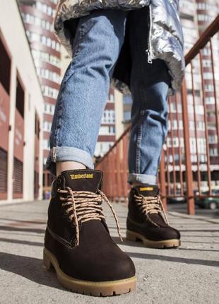 Женские ботинки timberland brown