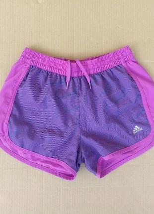 Спортивні шорти для бігу adidas climalite