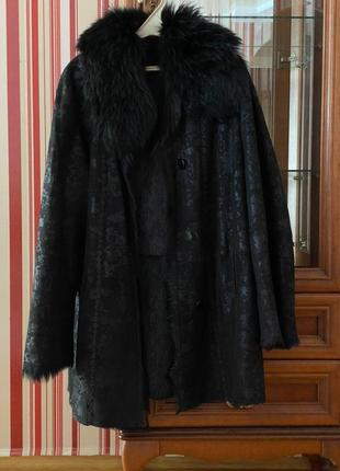 Дублянка чорна козлик