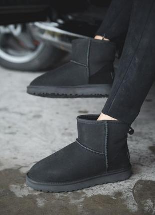 Ugg classic mini black suede женские сапоги угги черный цвет из овчины