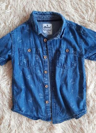 Джинсовая рубашка. джинсова сорочка