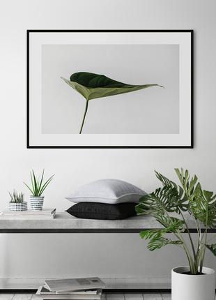 Постер «рослина no.2»