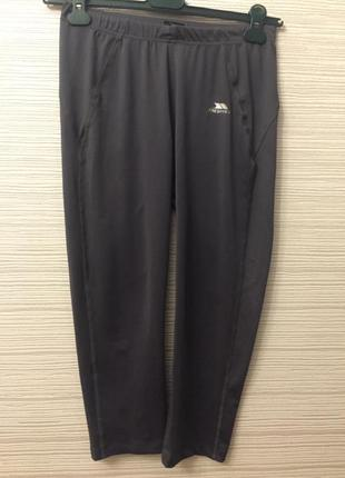 Спортивні штани-легінси