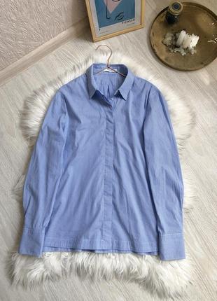 Базовая голубая рубашка mango женская 100% хлопок