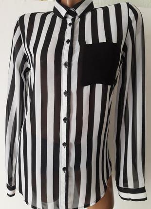 Класическая блуза в полоску