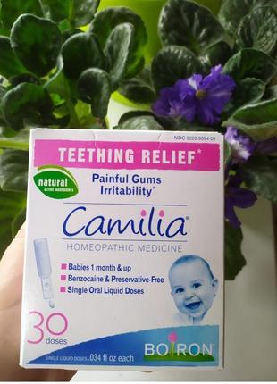 Camilia boiron прорезывание зубов