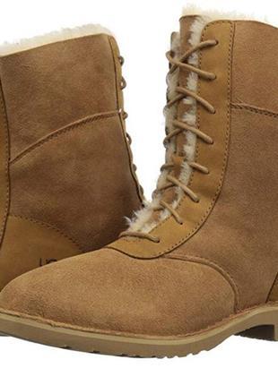 Зимние сапоги  ботинки ugg оригинал4 фото